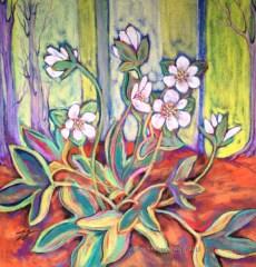"Sharp-Lobed Hepatica _Hepatica acutiloba Pastel and Colored Pencil 8.5"" x 8.5"""