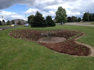 Finished planting